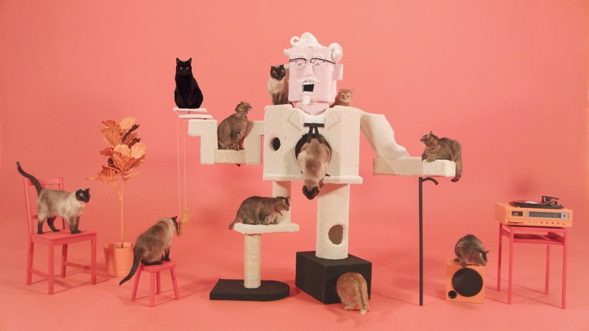 Colonel Sanders Cat Climber