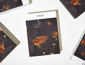 Pulp II: A Visual Bibliography of the Banished Book