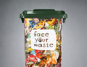 Lauren Regolini: Face Your Waste