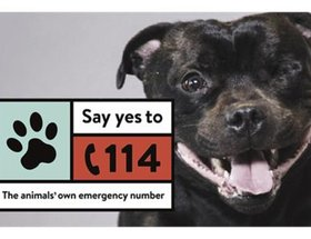The Animals' Own Emergency Number
