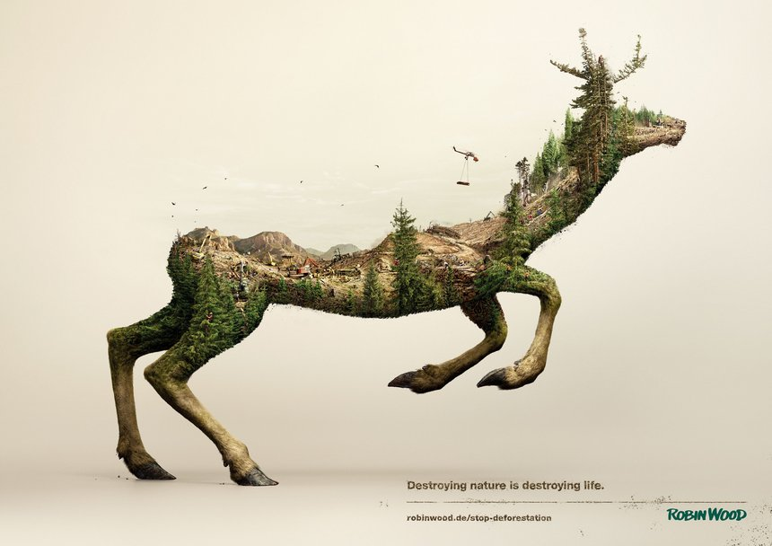 Disappearing Animals