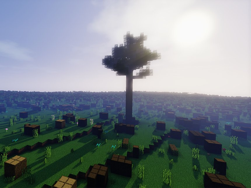 To The Last Tree Standing